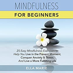 Mindfulness for Beginners