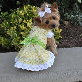 Emily Yellow Floral and Lace Dress w/ Matching Leash (Medium) by DOGGIE DESIGN