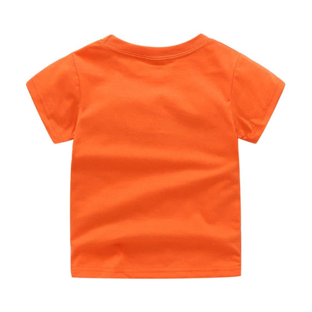 FELZ Ropa Bebe Ni/ño Verano 2019 Reci/én Nacido 1-7 a/ños Camiseta con Estampado de cocodrilo de Dinosaurio de Dibujos Animados y Pantalones Cortos de Rejilla Regalo Original Ni/ño