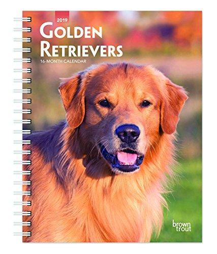 Golden Retrievers 2019 Calendar