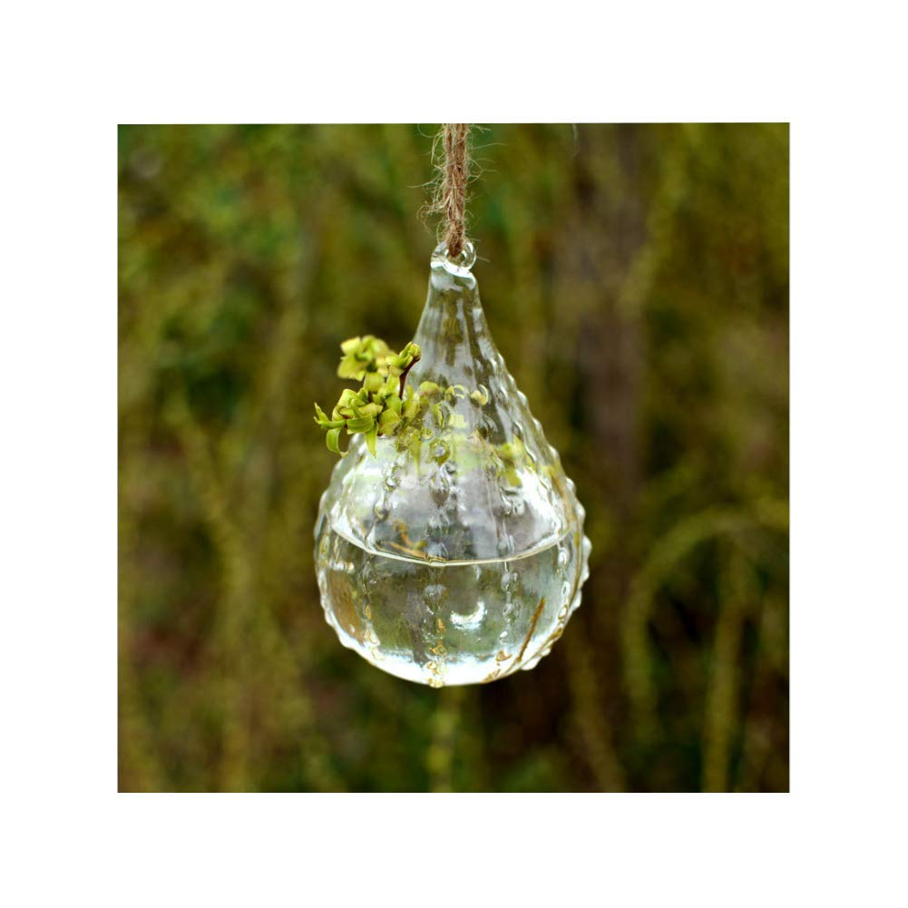 Clear Glass Hanging Terrarium Glass Vase Plant Hydroponic Container (B)