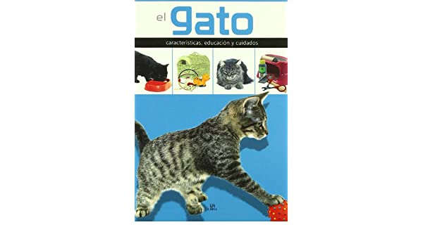 El gato/ The Cat: Caracteristicas, educacion y cuidados/ Characteristics, Education and Care (Spanish Edition): Javier Villahizan: 9788466218283: ...