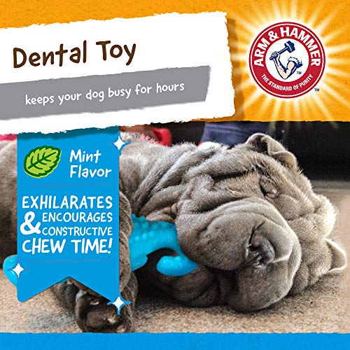 Arm & Hammer For Pets Nubbies Dental Toys Gator Dental Chew Toy for Dogs | Best Dog Chew Toy For Moderate Chewers | Reduces Plaque & Tartar Buildup Without Brushing, Gator, FF8433
