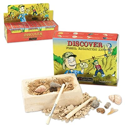 GeoCentral Fossil Excavation Dig Kit: Toys & Games