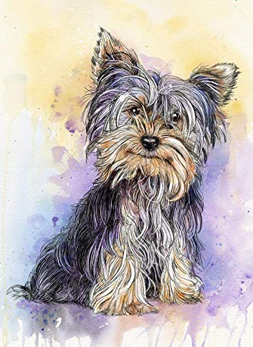 Yorkshire Terrier Watercolor Art Print of Original Painting, Pet Themed Party Nursery Home Wall Decor, Gift for Dog Mom, Dad, Parent; Rainbow Bridge Pet Loss Sympathy Housewarming Memorial Gift