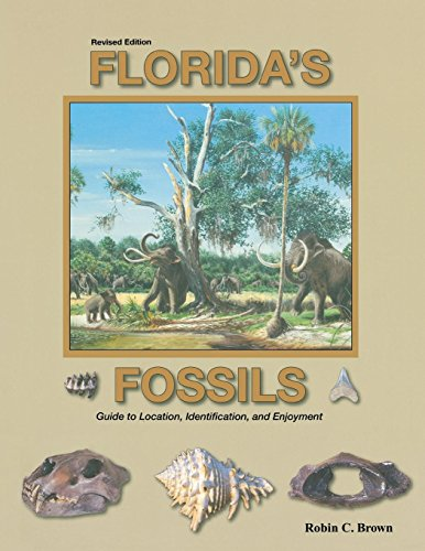 Florida's Fossils (Fossil Legends)