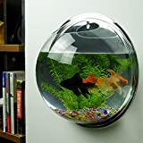 "Home Decoration Pot Plant Wall Mounted Hanging Bubble Bowl Fish Tank Aquarium ""Mirror 29.5cm""Set43"