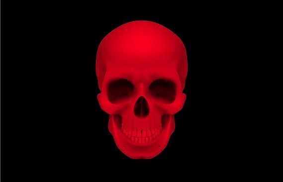 Michael Rene Pflüger Barmstedt 5 4 X 8 4 Cm Hxb Autoaufkleber Pirat Rot Schwarz Totenkopf Skull Piratenaufkleber Sticker Aufkleber Fürs Auto Motorrad Auto