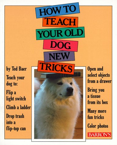 How to Teach Your Old Dog New Tricks