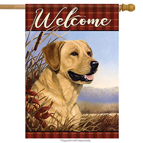Fall Lab Welcome House Flag Autumn Yellow Labrador Retriever 2 Sided 28