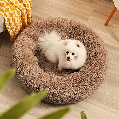 Round beds for sale _image1
