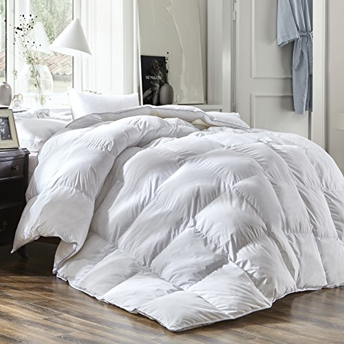 Luxury Queen Size White Goose Down Feather Comforter Duvet Insert Goose Down All Seasons 600 Thread Count Hypoallergenic 100% Cotton Shell Down Proof,Baffle Box - Duvet Luxury