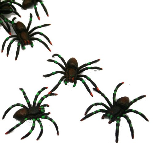 U.S. Toy Painted Spiders : Package of 12, Black -