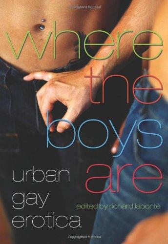 Where the Boys Are: Urban Gay Erotica
