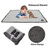 Waterproof Dog Blanket,Premium Pet Puppy Cat Soft Fleece Sherpa Throws Blanket Cushion Mat for Car Seat Furniture Protector Cover Small 50'' x 30'' by Pawsse Gray