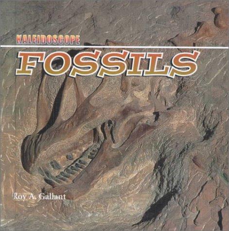 Download Fossils (Kaleidoscope) ebook