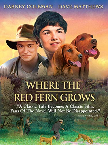 red fern grows movie - 1