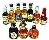 輸入ウイスキー ミニチュアボトル 10本セットvol2  50ml