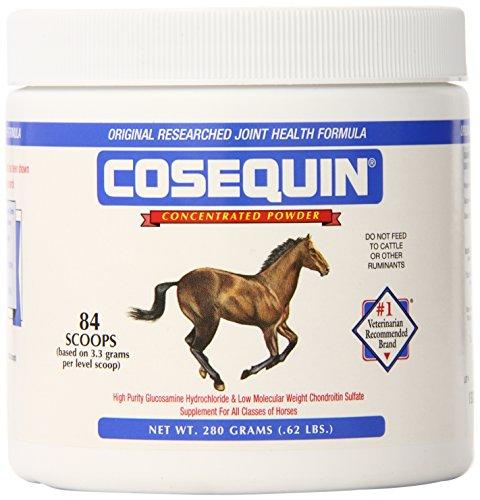 Nutramax Cosequin Equine Powder, 280 Gram Container