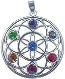 Chakra Anhänger Blume des Lebens, 7 Chakrasteine, versilbert, L 4,0 cm, D 3,5 cm,Versand innerhalb 24 Stunden !!!