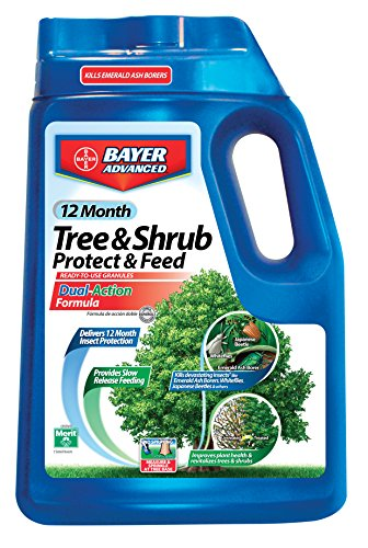 Slow Release Fertilizer (Bayer Advanced 701910 12 Months Tree and Shrub Protect and Feed Granules, 10-Pound)