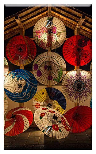 Single-Gang Blank Wall Plate Cover - Japanese Umbrellas for sale  Delivered anywhere in USA
