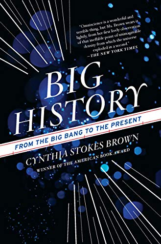 image for Big History: From the Big Bang to the Present