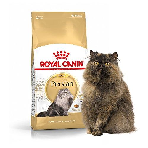 Royal canin persian cat food india