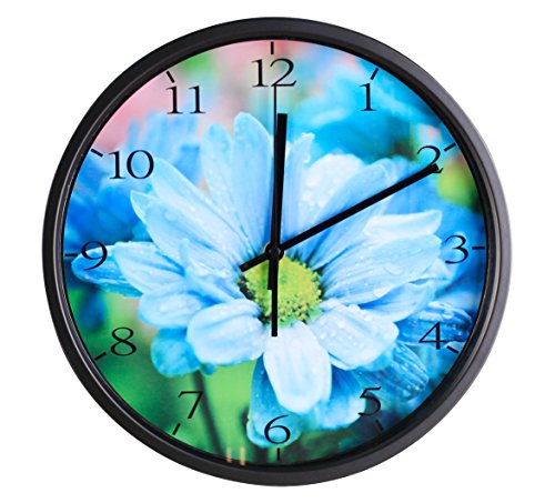 Wall Clock, Silent Non Ticking Quality Quartz Battery Operated 12 Inch Round Easy to Read Home/Office/School Clock ()