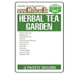 HERBAL TEA GARDEN Seeds COMBO KIT - from Anise Hyssop to Peppermint Seeds - By MySeeds.Co (Herbal Tea Kit)