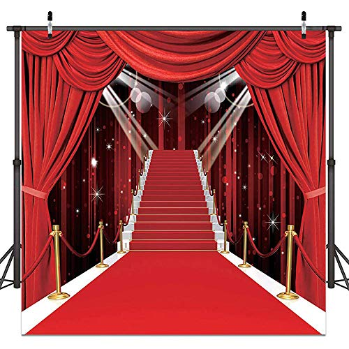 Bridal Wedding Photo Backdrops Red Carpet Backgrounds Vinyl Photography Background Backdrops for Wedding Birthday Party Decoration 53(5x7) -
