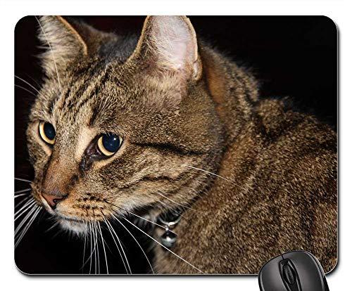 Mouse Pads - Hangover Cyper Pet Cat