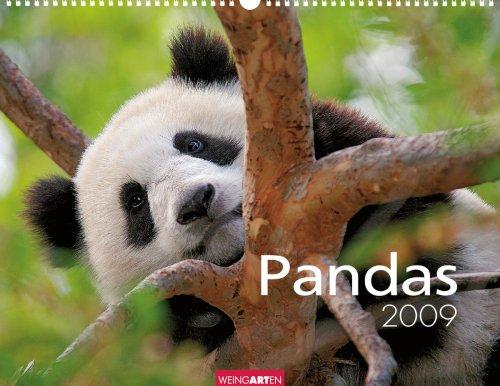 Weingarten-Kalender Pandas 2009