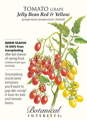grape tomato - 7