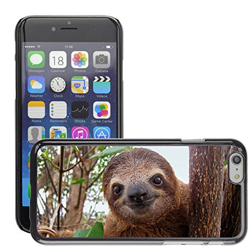 Premio Sottile Slim Cassa Custodia Case Cover Shell // V00002181 paresse bébé // Apple iPhone 6 6S 6G PLUS 5.5""