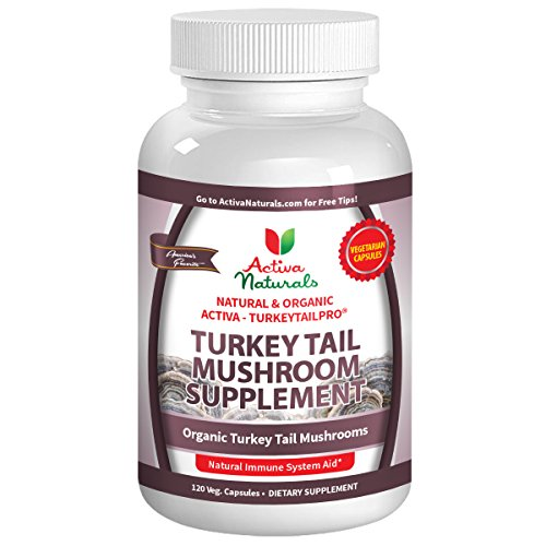Turkey Tail Mushroom Capsules (120 Vegetarian) with Pure Mushrooms (Trametes Versicolor) to Help Support Immune Defense System Health