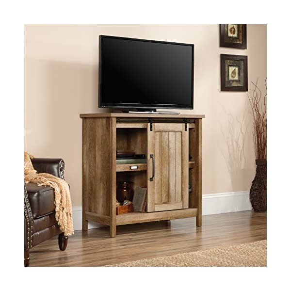 "Sauder Adept Storage Accent Storage Cabinet, For TV's up to 39"", Craftsman Oak finish"