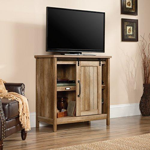 Sauder 422473 Adept Storage Accent Storage Cabinet, Craftsman Oak Finish