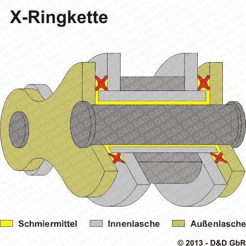 1997-2004 extra verst/ärkt Typ AG DID X-Ring Kettensatz LT-F 160 QuadRunner VX2 gold