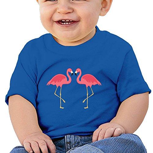 Hoeless Rosa Flamingobaby Short Sleeve Teecomfortable Shirt 6 M Royalblue