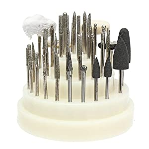 40 PCS low Speed Micro Polishing Drill Bits Include Tungsten Carbide Burr, Silicone Polishers, Diamond Burs, Hair Brush by Dr. House 1