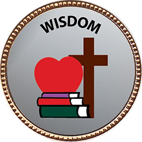 Wisdom Award, 1 inch dia Gold Pin