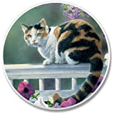Cat on Rail Stone Auto Car Cupholder Coaster (1)