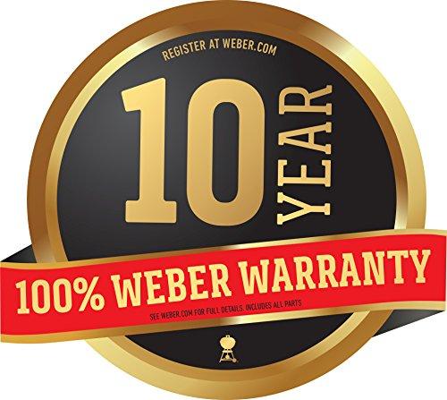 Weber-45020001-Spirit