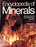 img - for Encyclopedia of Minerals book / textbook / text book