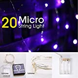 LIDORE Micro LED 20 Super Bright Purple String Lights with timer. Battery Operated on 7.87 Ft Long silver ultra thin copper wire.