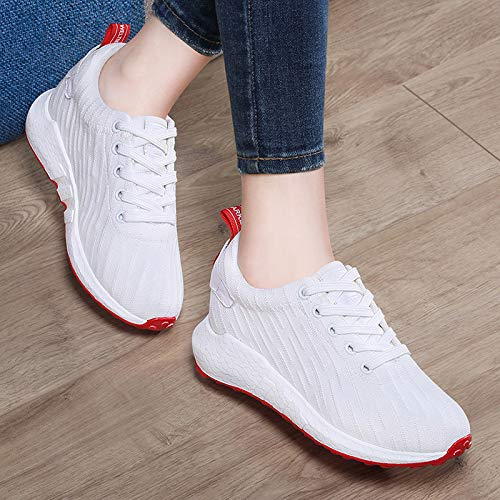 GTVERNH GTVERNH GTVERNH Frauen Schuhe Echtes Leder Damenschuhe Fliegende Stricken Sportschuhe Koreanischen Version Baitao 0ce62d