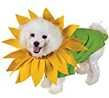 Sunflower Pet Costume Seasons