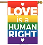 ShineSnow Colorful Rainbow Peace LGBT Gay Label House Flag 28″ x 40″ Double Sided, Polyester Love is A Human Rights Welcome Yard Garden Flag Banners for Patio Lawn Home Outdoor Decor