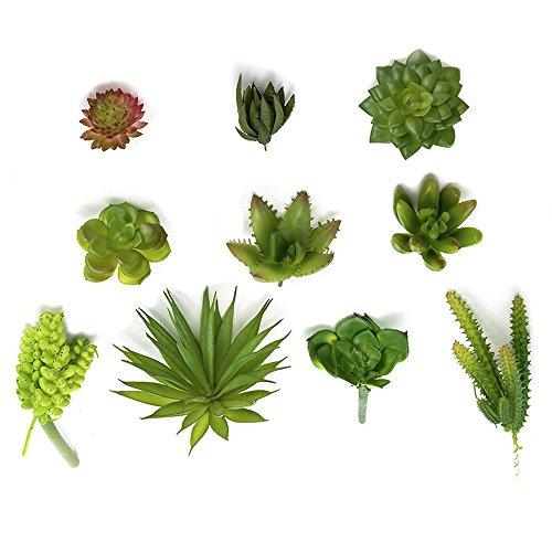Nattol Artificial Succulent Plants, Assorted 10Pcs Mini Fake Succulents Artificial Cactus Plants Unpotted